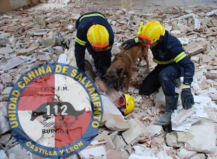 ¡Perros adiestrados para salvar vidas! @GremUcr
